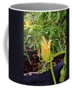 Qcpg 13-010 Coffee Mug
