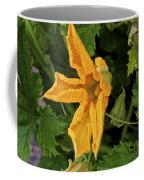 Qcpg 13-014 Coffee Mug