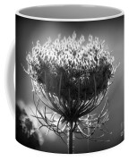 Queen Annes Lace - Bw Coffee Mug