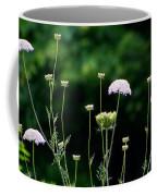 Queen Anne's Lace Coffee Mug
