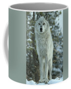 Queen Of The West Coffee Mug