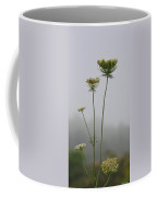 Queen's Lace On A Foggy Morning Coffee Mug