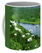 White Daisies At Queen's View 2 Coffee Mug