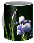 Quenched Overnight Coffee Mug