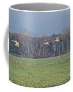 Quidditch Coffee Mug