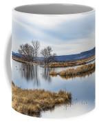 Quiet Wetlands Coffee Mug