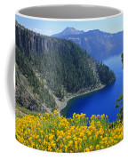 D2m5622-rabbit Brush At Crater Lake Coffee Mug