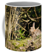 Rabbit In The Woods Coffee Mug