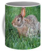 Rabbit On The Run Coffee Mug