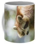 Raccoon Portrait Coffee Mug