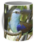 Racket Tailed Roller Coffee Mug