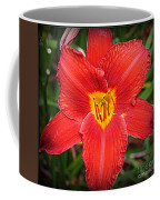 Radiant In Red - Daylily Coffee Mug