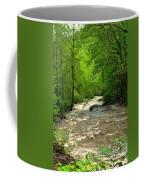 Raging Waters - West Virginia Backroad Coffee Mug