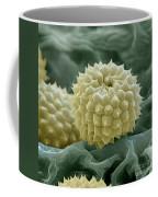 Ragweed Pollen Coffee Mug