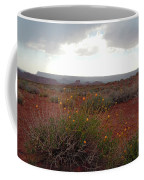 Rain At Monument Valley Coffee Mug