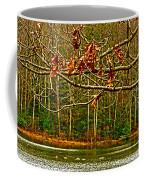 Rain At The Pumpie Coffee Mug
