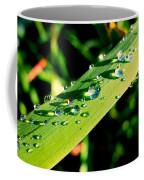 Rain Blade Coffee Mug