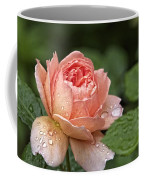 Rain Drenched Rose Coffee Mug