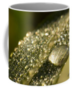 Rain Drop Coffee Mug