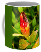 Rain Drops On Colorful Leaf Coffee Mug
