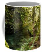 Rain Forest 2 Coffee Mug