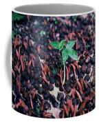 Rain Forest Seedling, Indonesia Coffee Mug