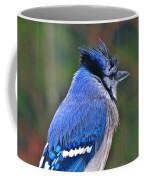 Rain Jay Coffee Mug