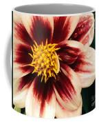 Rain Kissed Morning Coffee Mug