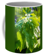 Rain Soaked Leaf Coffee Mug