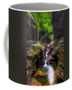 Rainbow Falls Of Watkins Glen Coffee Mug