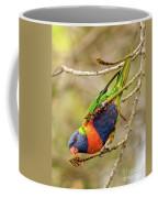 Rainbow Lorikeet 02 Coffee Mug