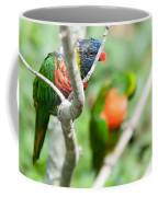 Rainbow Lorikeet Parrot Trichoglossus Haematodus Coffee Mug