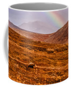 Rainbow Over Grizzly In Denali Coffee Mug