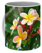 Rainbow Plumeria - No 4 Coffee Mug