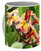 Rainbow Plumeria - 1 Coffee Mug
