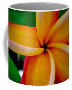 Rainbow Plumeria Coffee Mug