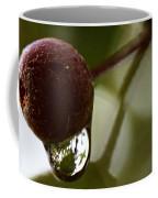 Raindrop Reflection 1 Coffee Mug