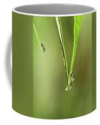 Raindrop Reflection Coffee Mug