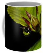 Raindrop Reflections Coffee Mug