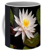 Raindrop Water Lilly Coffee Mug
