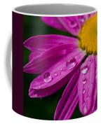 Raindrops On Daisies Coffee Mug