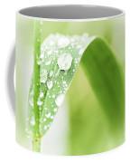 Raindrops On Grass Coffee Mug