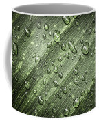 Raindrops On Green Leaf Coffee Mug by Elena Elisseeva