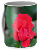 Raindrops On Rosebud Coffee Mug