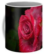 Raindrops On Roses Coffee Mug by Peggy Hughes