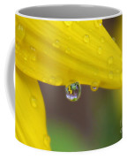 Reflection In The Rain Coffee Mug