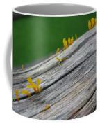Rainforest Blooms Coffee Mug
