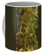 Rainforest Colors Coffee Mug