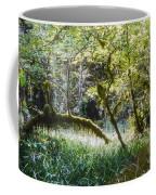 Rainforest Landscape Coffee Mug