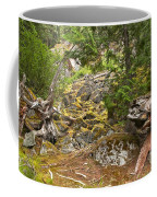 Rainforest Rock Slide Coffee Mug